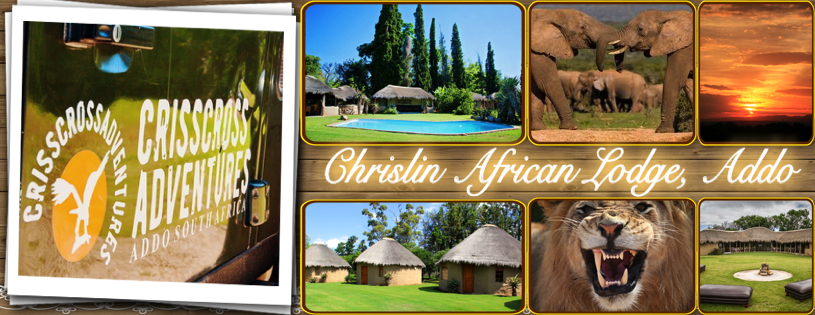 Chrislin African Lodge, Addo Accommodation