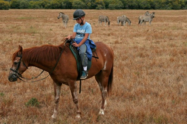 addo elephant park horseriding
