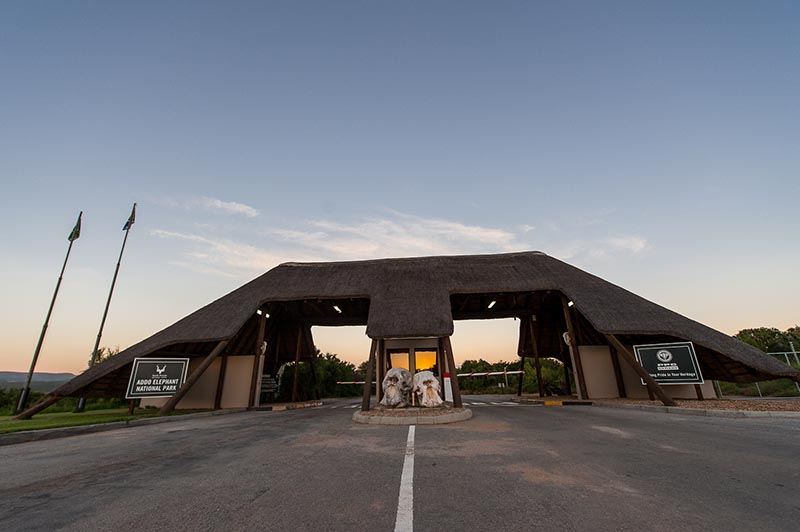 Addo elephant national park main gate