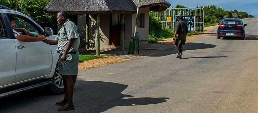 Addo Elephant Park Safari on a Budget