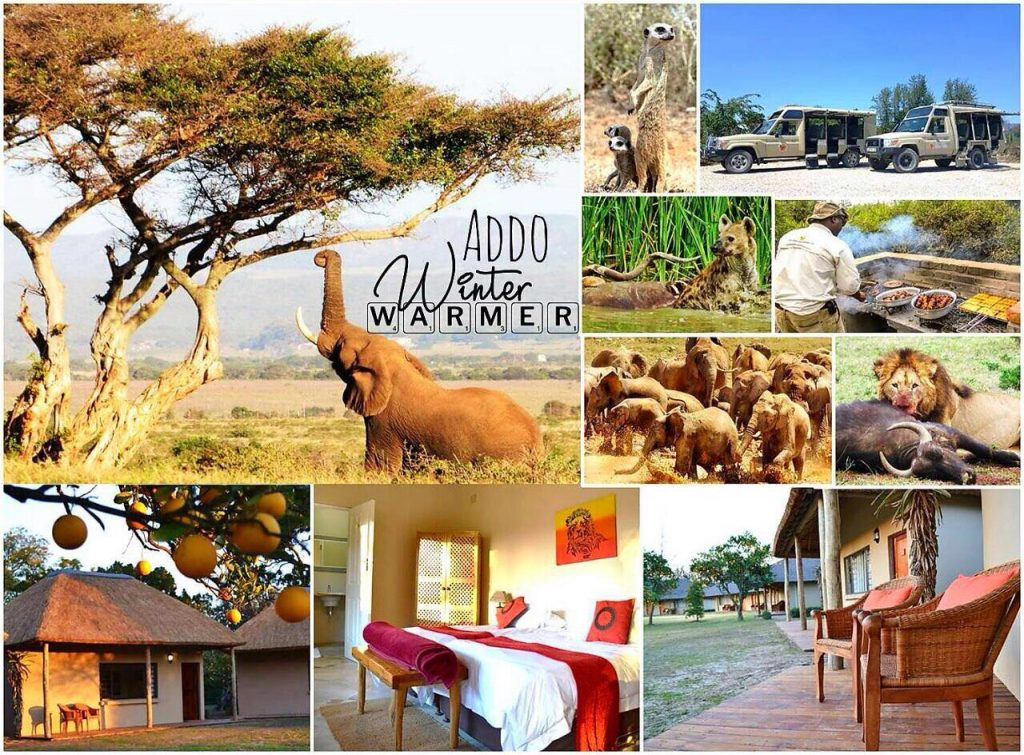 Addo Accommodation Special