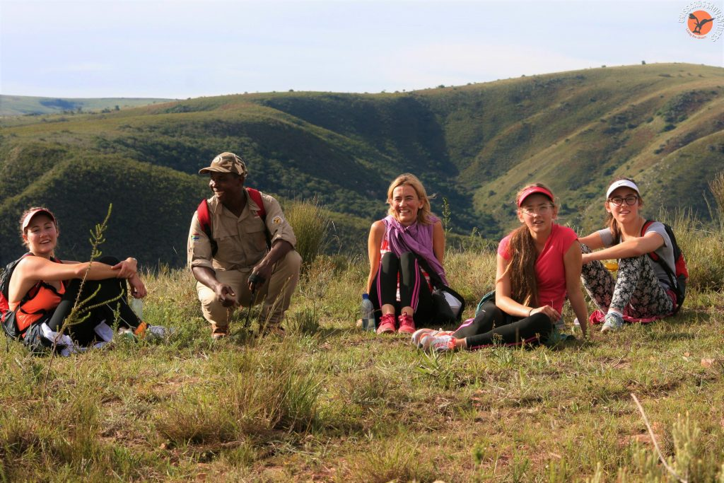 Addo Mountain Safari