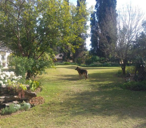 Top TripAdvisor Addo Accommodation Reviews