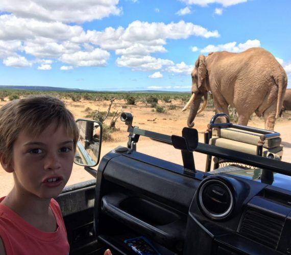 Family Safari Holiday at Chrislin